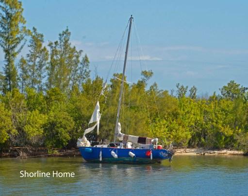 Shoreline Home